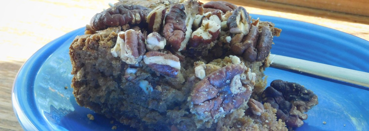 Syrian Coffee Cake