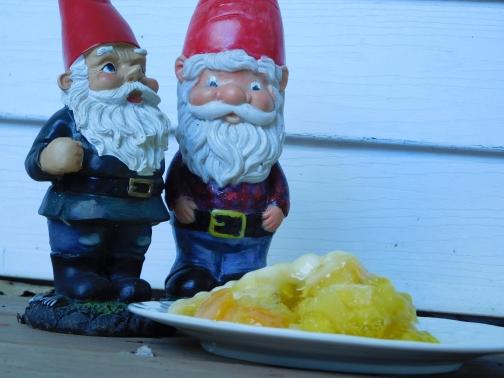 Tropical Delight Salad gnomes