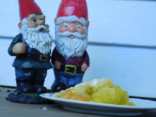 Tropical Delight Salad gnomes